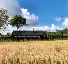 the-long-studio-threefold-architects // dreamhouse!