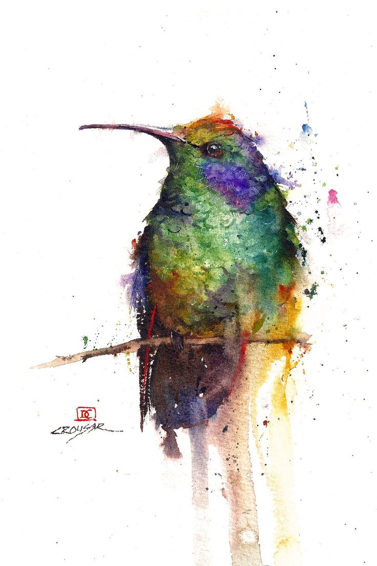 Hummingbird watercolor bird art print by dean crouser for Pretty watercolor pictures