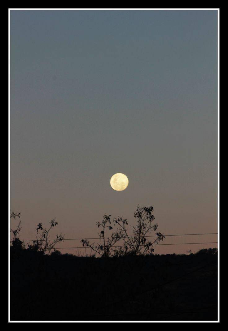 luna...luna...lunita llena llena mi corazon esta noche linda....