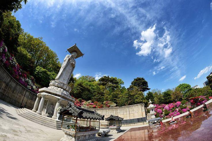 "274 Beğenme, 2 Yorum - Instagram'da 풍경,여행,사진. Beauty of Korea! (@korean_landscape): """"봉은사""  한번 가볼만 한 곳입니다!  Location : Bongeunsa. Seoul. Korea.  #인스타그램 #인스타 #사진 #여행 #풍경 #감성 #사진스타그램…"""