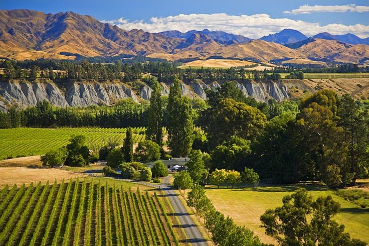 Awatere Valley, producer of much fine wine,  see more at New Zealand Journeys app for iPad www.gopix.co.nz