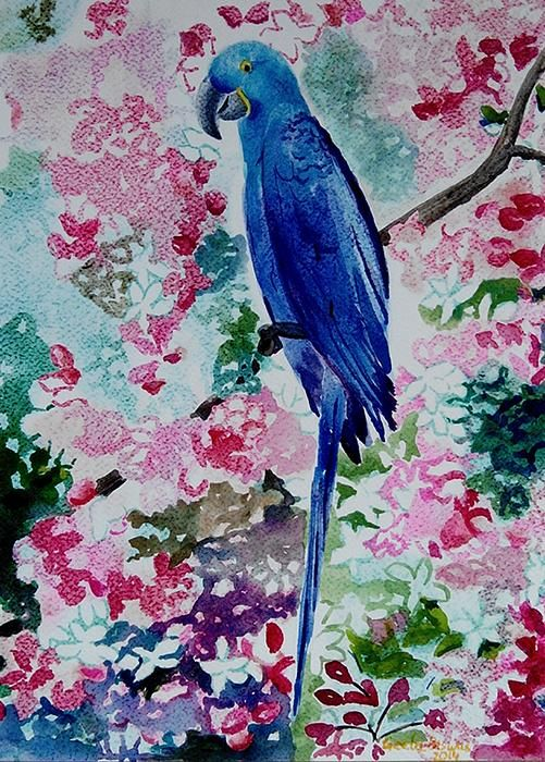 #macaw #watercolor #art #hyacinth #pet #blue #drawing #painting #illustration for #prints at $27