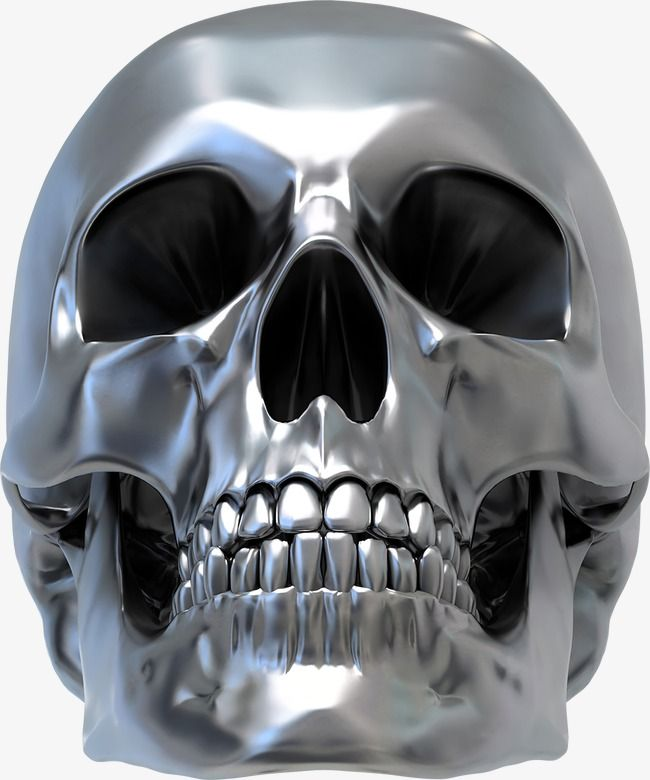 Silver Skull Vector Skull Vector Silver Skull Png And Vector With Transparent Background For Free Download Metal Skull Skull Skull Pictures