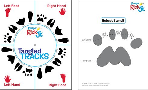 Animal Tracks Twister Game - National Wildlife Federation  Pretty cute, really , an indoor game or outdoor