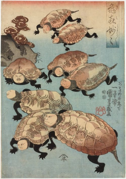 "jibadojo: "" Strange and Wondrous Immortal Turtles - Kiki myomyo 亀喜妙々 1848 """