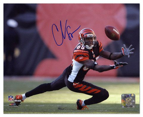 chad ochocinco football cards | Chad Johnson Cincinnati Bengals - Diving For Catch - Autographed 8x10 ...