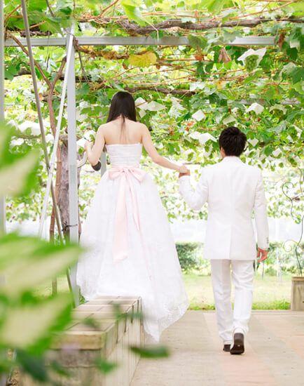 ぶどうの木の下で四季折々の表情を見せるぶどう棚の下で、開放感あふれるナチュラルな結婚式