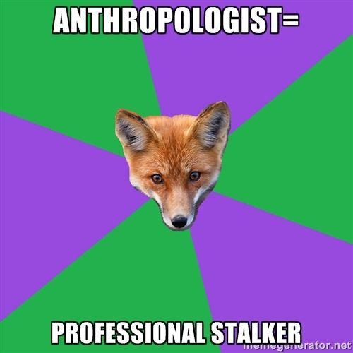 Anthropology Major Fox - Anthropologist= Professional stalker