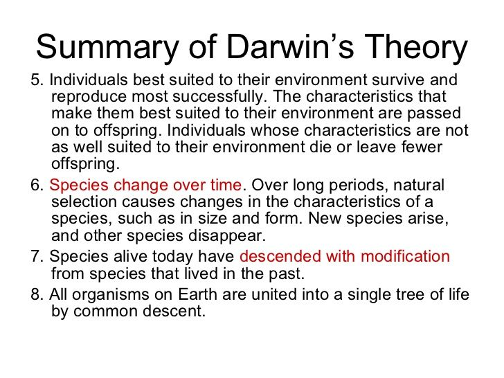 Essay On Darwins Theory Of Evolution - Opinion of professionals