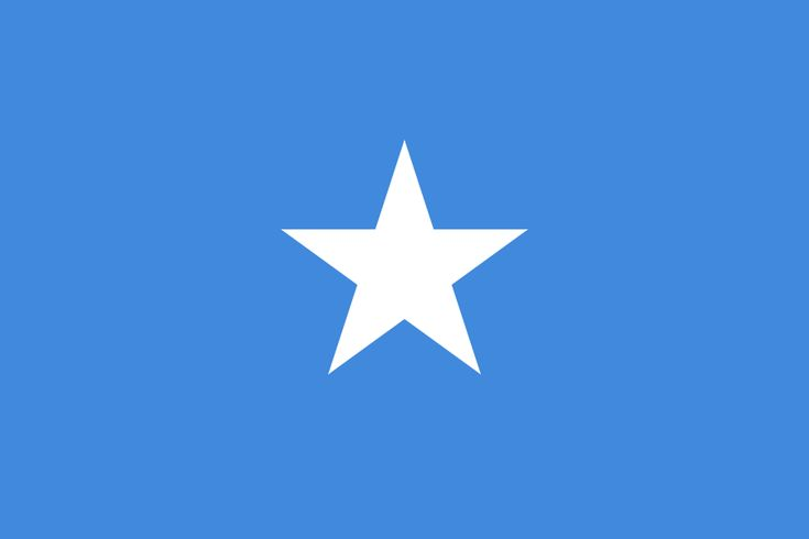 Flag of Somalia - FLAGS OF THE WORLD : More Pins Like This At FOSTERGINGER @ Pinterest