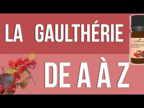 [HUILES ESSENTIELLES] À la découverte de la Gaulthérie Odorante