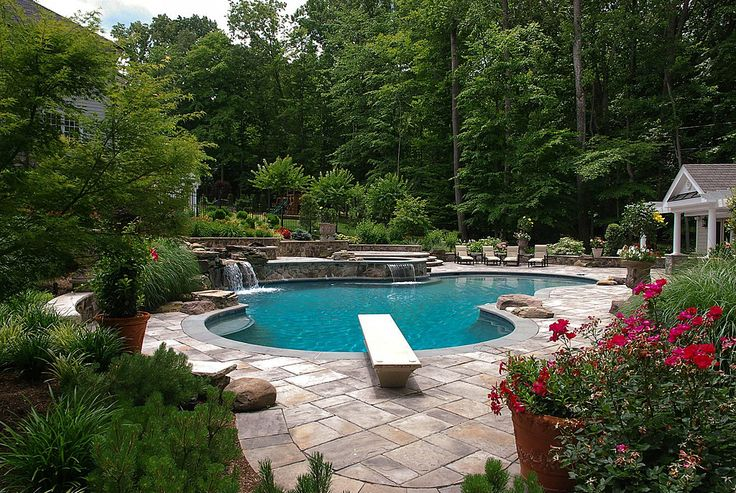 Traditional Swimming Pool - Found on Zillow Digs
