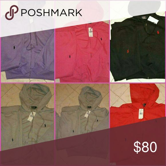 Women polo jogging suit New Ralph Lauren Other