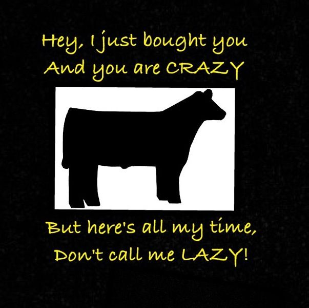 C Stock Quote: Haha Love Show Animals! #missin'fair #showkid #love