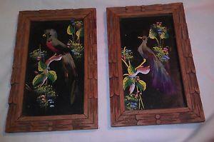 Set of 2 Feather Bird Folk Art Carved Frame Laredo 40's Vintage Mexican Pictures | eBay