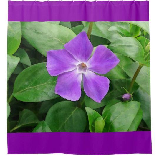 Vinca Major Shower Curtain by www.zazzle.com/htgraphicdesigner* #zazzle #gift #giftidea #shower #curtain #purple #bathroom #vinca #major #summer #flower #spring