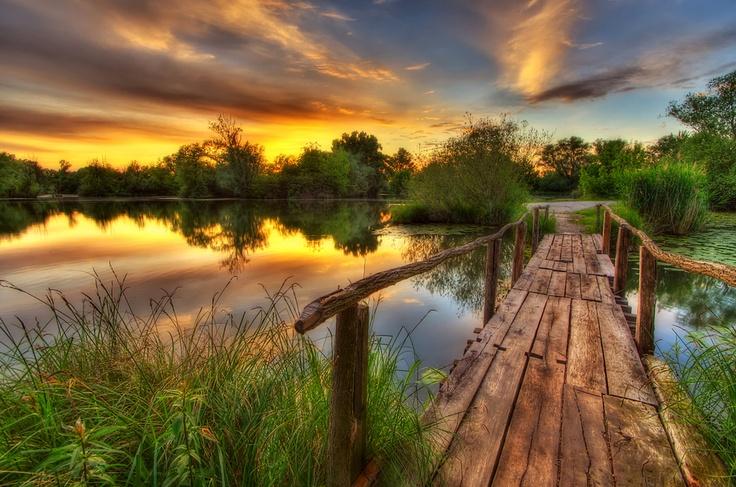 Old wooden bridgePhotos, Photographers, Bridges Photography, Boris Frkovic, Art Inspiration, Art Photography, Wooden Bridges, Scenery, Fence Art