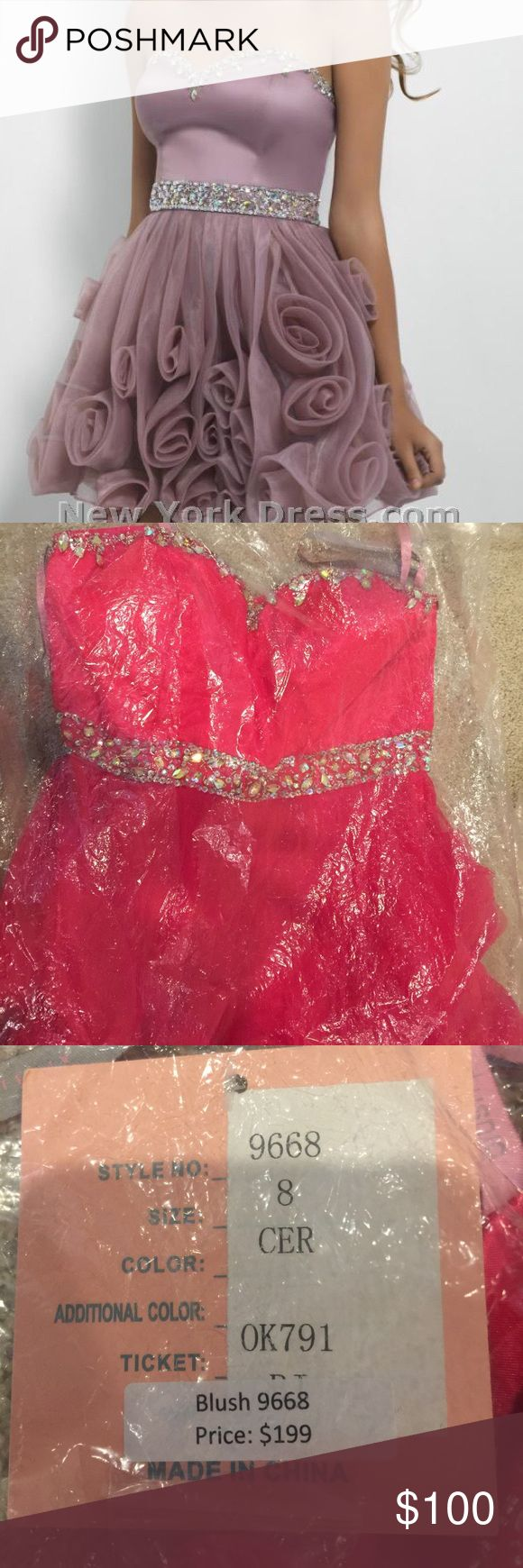 Pink Blush Prom Dress Pink in Color. Style # 9668. Size 8 Blush Prom Dresses