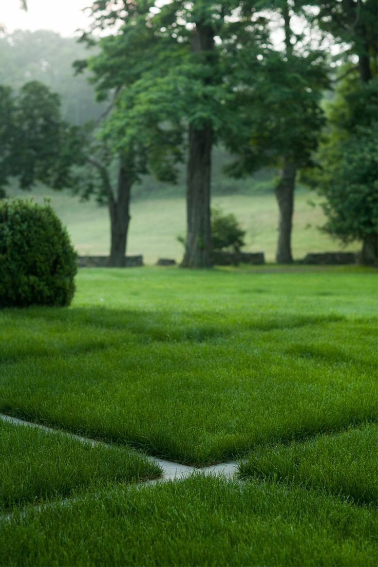 101 Best Images About Lawn On Pinterest | Gardens Villas And Hedge