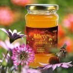 http://www.apigold.ro/en/miere/product/50-miere-poliflora-450g