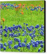 Canvas Print - Decorative Texas Bluebonnet Meadow Photo A32517 Canvas Print by Mas Art Studio, #Canvas #Print #Photo #Bluebonnets #Decorative #MasArtStudio #WallArt #ArtForSale #MixedMedia #MarthaAnnSanchez #Gestural #Interiors #ArtLoversOnline #CanvasPrint #GicleePrint #Orange #Blue #New #LivingRoomArt #BedroomArt #ChildrensRoomArt #Creative #Kitchen #OfficeSafe #LaundryRoom #Art #Office #ChildsRoom #Painting #Reproduction #SunRoom #Patio #Expressive #ModernArt #Outdoors #Floral #Plants…