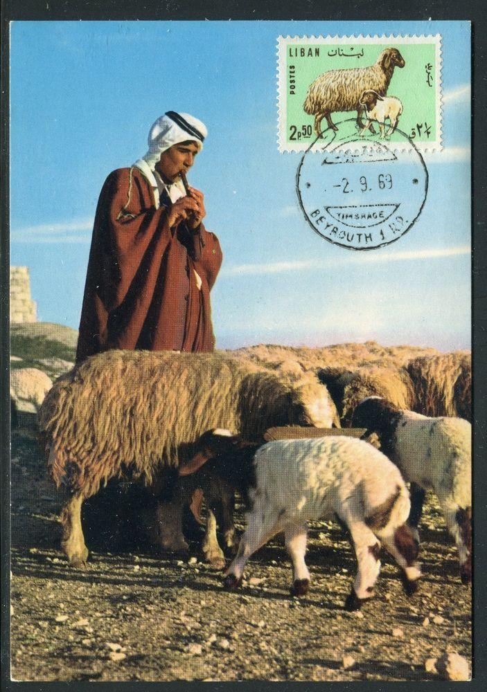 Liban - Carte Maximum 1969 - le Mouton | eBay