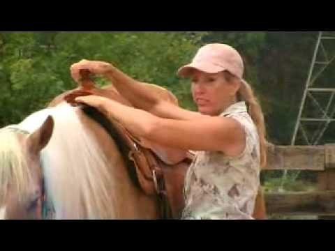 Western Saddle Fit - Great information! Many horses are being ridden in pain which can cause dangerous behaviors leading to serious injury. This can be easily fixed by having a basic knowledge of proper saddle placement and fitting. Although not an exhaustive teaching on saddle fit, this video covers the necessary basics of Western saddle fit.