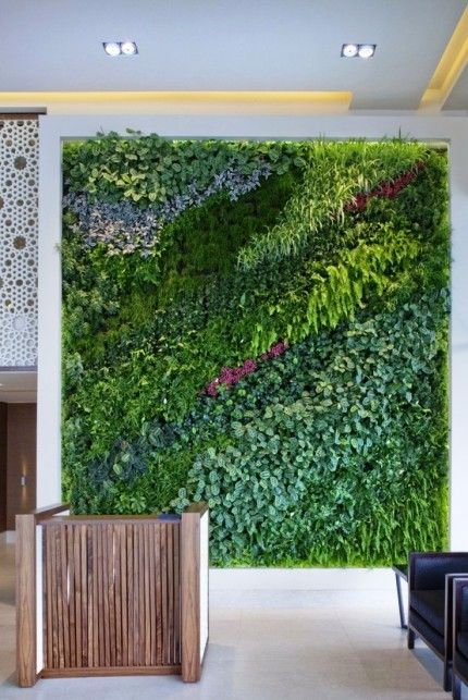 vertical garden + colorful green wall