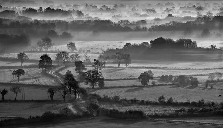Misty Lane Through Pewsey Vale Chris Beard Year: 2011