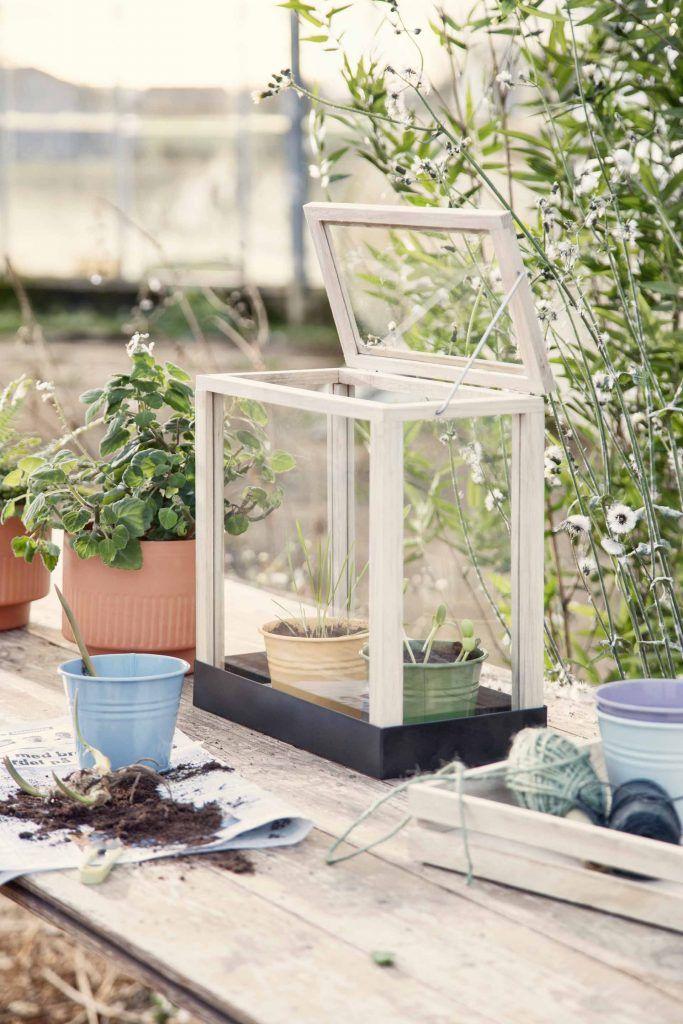Nos Accessoires De Jardin 2019 Preferes Chez Sostrene Grene Decoration Jardin Jardiniere Design Terrasse Jardin