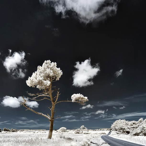 18 Photographies Infrarouge de David Keochkerian