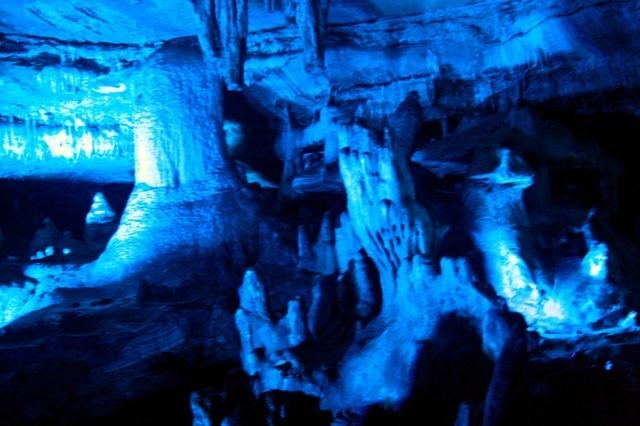 Jaskinia Sataplia - ślady dinozaurów, las typu kolchidzkiego