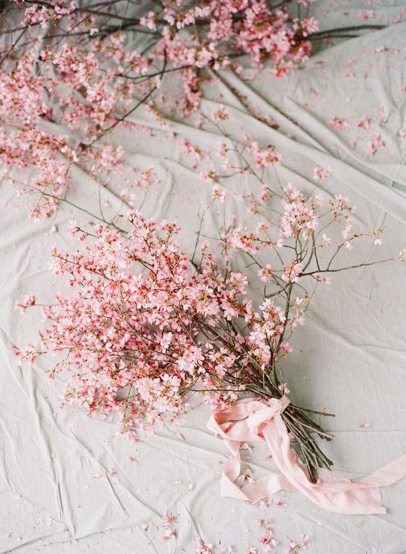 This Charleston Cherry Blossom Bridal Editorial Captures The True Essence Of Spring Cherry Blossom Theme Cherry Blossom Wedding Theme Cherry Blossom Bouquet