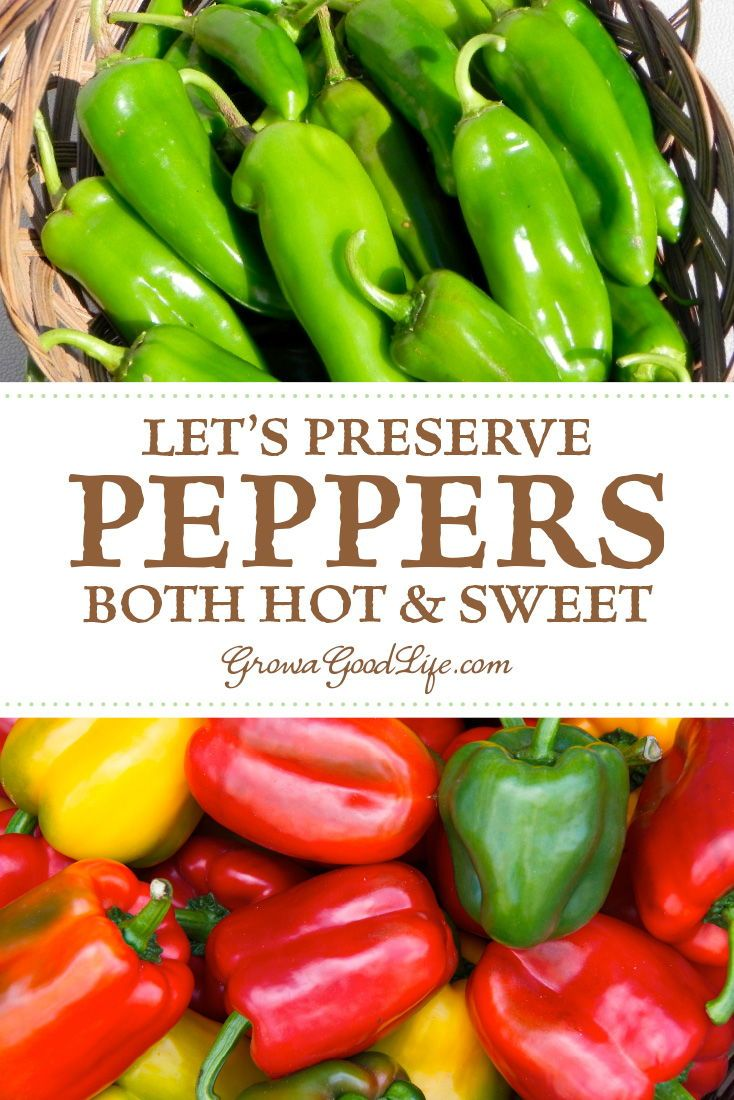 3 Ways To Preserve Peppers Stuffed Peppers Stuffed Hot Peppers Hot Pepper Recipes