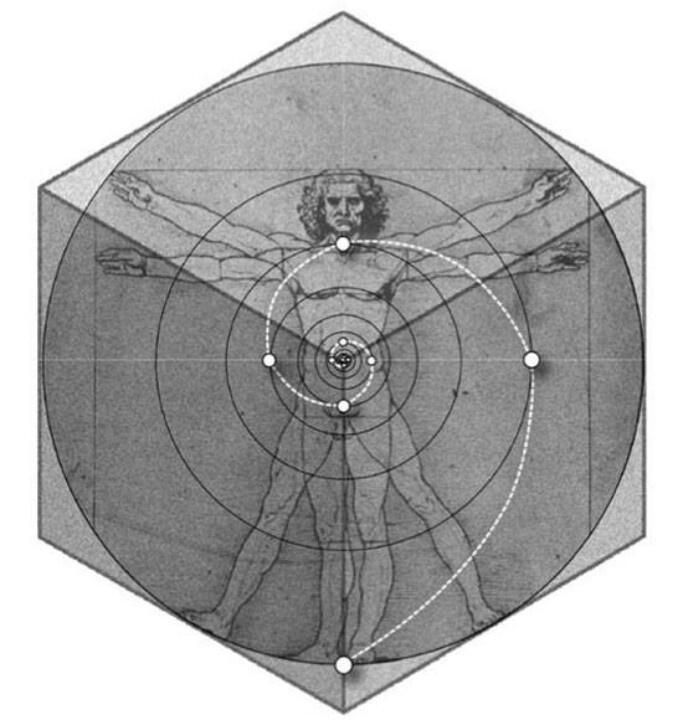 "Leonardo da Vinci's ""Vitruvian Man"" with geometric overlays"