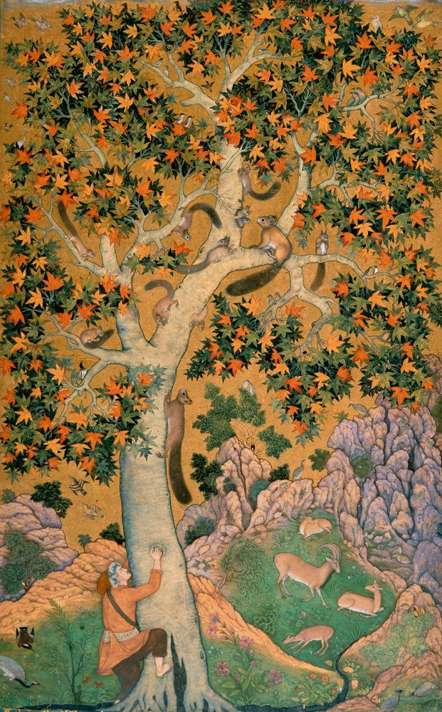Squirrels in a Plane Tree. Ascribed to the artist Abu'l Hasan, 1605-08. Mughal India British Library