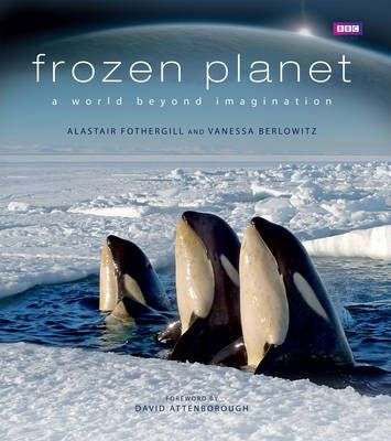 Remarkable record of life in the polar regions.