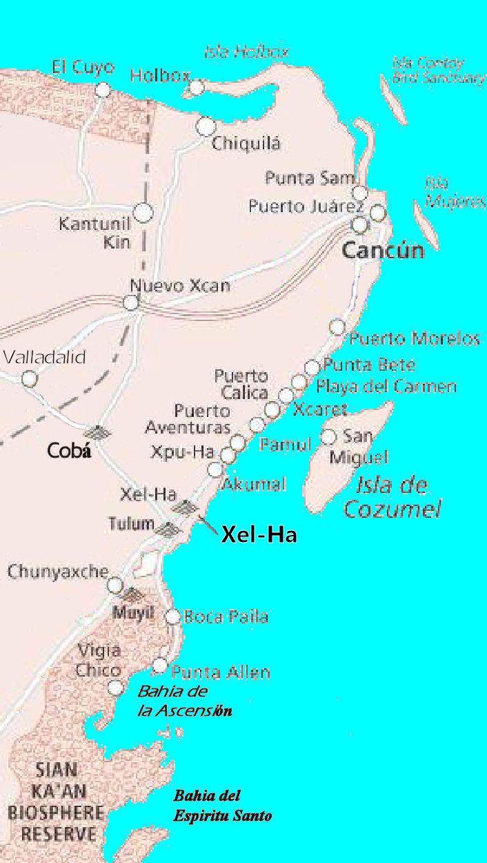 xel ha mexico - Buscar con Google                                                                                                                                                                                 More