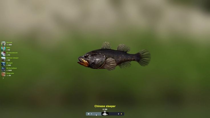 Trophy Fishing 2 GAME play - Trophy Fishing 2 is a Free to play Sport Fishing simulator Multiplayer Game featuring beautiful and realistic 3D environment