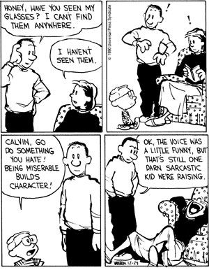 One of the best Calvin and Hobbes strips ever. The number of times I've died laughing over this one....