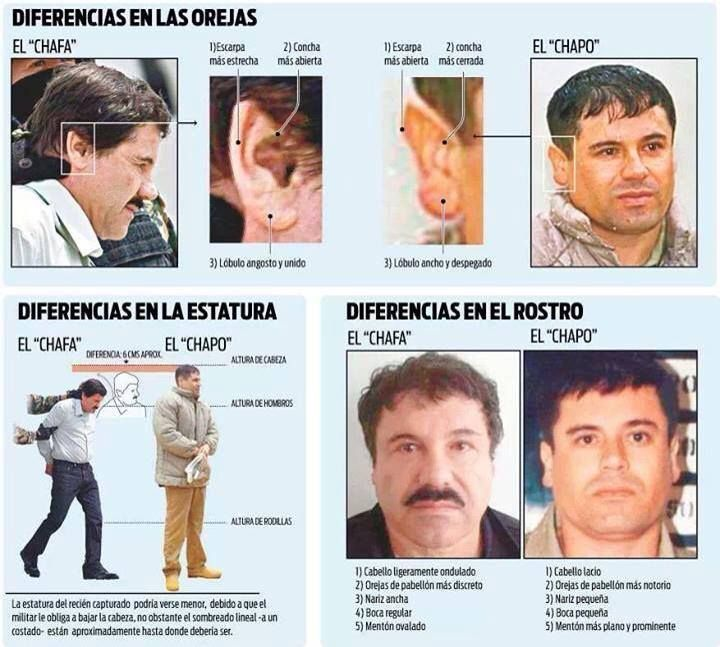 17 best images about narco trafficers on pinterest