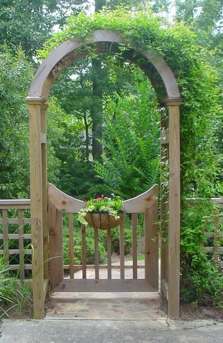 Image Result For Climbing Rose Over Arched Wooden Gate