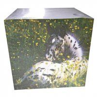 Large Block Pads - Appaloosa Foal (Must buy 3)