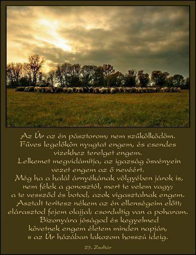 23.zsoltár