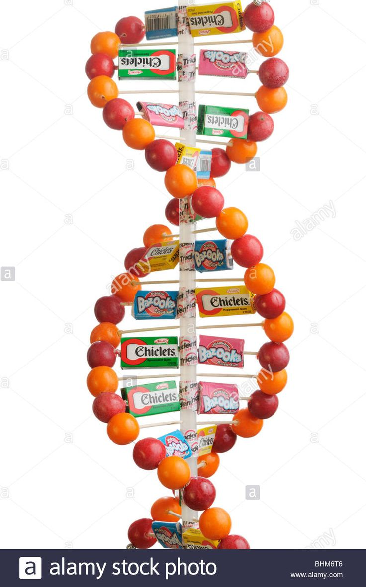 DNA double helix model made of gum balls and candy boxes and wrappers Stock Photo