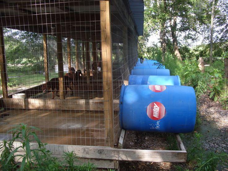 4b49b280af6b7dc907193f1e21af9e3f--dog-pen-dog-kennels