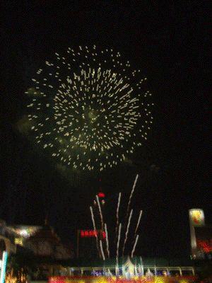 animated fireworks gif free | Firework(animation)