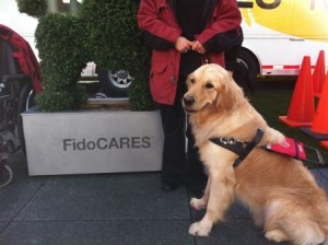 Fido unleashed a puppy haven in Toronto's Yonge-Dundas Square with plans to spread its pooch love to other Canadian cities throughout the year.