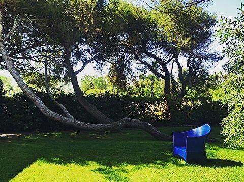 Per rilassarsi basta davvero poco...un po' d'ombra, un buon libro, il mare a pochi passi e tutta l'estate davanti. || What it takes to relax? Little details: a fresh corner in the garden, a good book, the sound of the sea...and the summer that you're going to love! || #locandadelmare #paestum #travelgram #travelgo #instago #relax #italiancoast #holidays #happiness #instagood #summer #cilentocoast