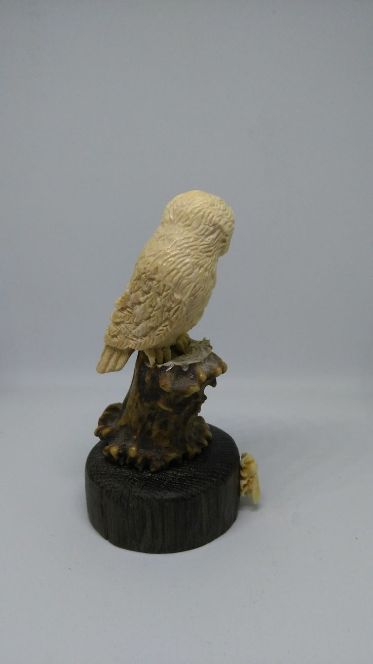 Sparrow And Hornet Carved Ivory Okimono Antler Ebony Воробей и Шершень Резная Скульптура Бивень Мамонта Рог Оленя Черное Дерево #Carved #Ivory #Okimono #Sparrow #Netsuke #Hornet #Antler #Mammoth #Tusk #Sculpture #Figurine #Statuette #Homedecor #Tabletop #Carving #Резное #Резной #Резная #Скульптура #Украшение #Окимоно #Нэцке #Кость #Кости #Резьба #Воробей #Шершень #Домашний #Декор #Статуэтка